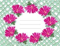 Chrysanthemum frame mesh royalty free illustration
