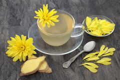Chrysanthemum and Ginger Tea Royalty Free Stock Images