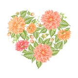 Chrysanthemum holiday card. Stock Image