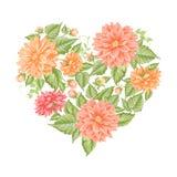 Chrysanthemum holiday card. Stock Image
