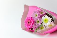 Chrysanthemum moms flower bouquet in a pink wrap on white background copy space stock photos