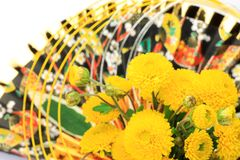 Chrysanthemum and New Year holidays image Royalty Free Stock Photo