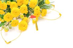 Chrysanthemum and New Year holidays image Royalty Free Stock Images