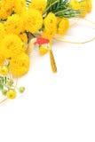 Chrysanthemum and New Year holidays image Stock Photo