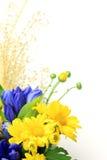 Chrysanthemum and pampas grass Stock Photo