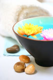 Chrysanthemum pebble and spa Royalty Free Stock Photos
