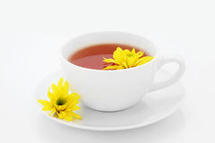 Chrysanthemum Tea Stock Photos