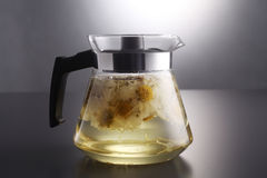 Chrysanthemum tea Royalty Free Stock Photography
