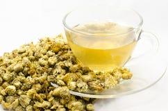 Chrysanthemum tea. Chinese Chrysanthemum Flower Tea Royalty Free Stock Photo