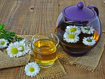 Chrysanthemum tea Royalty Free Stock Photo
