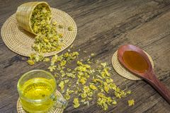 Chrysanthemum tea and honey bee on wood background Royalty Free Stock Images
