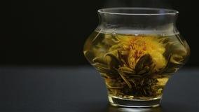 Chrysanthemum tea stock footage