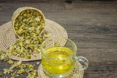 Chrysanthemum tea on wood background Royalty Free Stock Photography