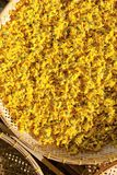 chrysanthemum torkade blommor arkivfoton