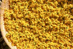 chrysanthemum torkade blommor arkivbild