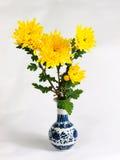 Chrysanthemumblommavase arkivbild
