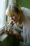 Chrysanthemums Photographie stock