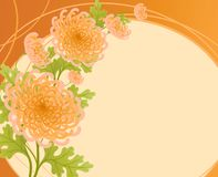 Chrysanthemums. vector illustration