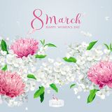 Chrysanthemums and Apple blossom for 8 March vector greeting car Stock Photos