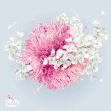 Chrysanthemums and Apple blossom vector arrangement Royalty Free Stock Photos