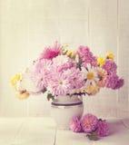 Chrysanthemums bunch Stock Image