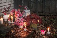 Chrysanthemums with burning candles in the autumn garden stock photo