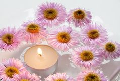 Chrysanthemums and candle. Stock Images