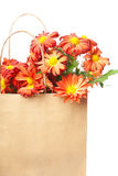 Chrysanthemums in a paper bag Royalty Free Stock Images
