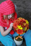 Chrysanthemums tree flowers in girl hands. Beautiful little girl with a bunch of flowers Stock Photography