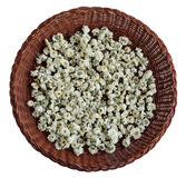ChrysanthemumTea Royaltyfria Foton