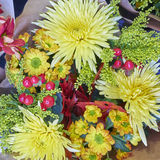 Chrysanthemus and various other flowers Stock Photos