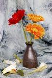 Chrysanthmum i en vas Fotografering för Bildbyråer