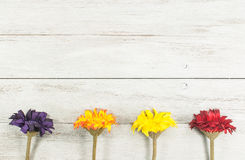 Chrysanths colorful flowers. Vintage Flowers on white wood background Stock Images