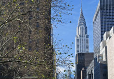 Chrysler Building View Stock Photos