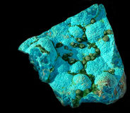 Chrysocolla azul com as bolas verdes da malaquite no preto Imagem de Stock Royalty Free