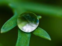 chrystal的球 图库摄影
