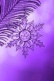 Chrystal przejrzysty płatek śniegu na srebro gałąź obraz royalty free
