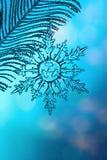 Chrystal transparante sneeuwvlok op zilveren tak royalty-vrije stock afbeelding