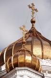 Chryste katedralny zbawiciela Zdjęcie Royalty Free