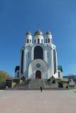 Chrystus wybawiciel katedra Zdjęcia Stock
