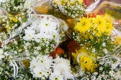 Chryzantema i Biali krajaczy kwiaty Obraz Stock