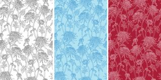 chryzantema kwiaty deseniują bezszwowego Zdjęcia Royalty Free