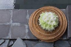 Chryzantema kwitnie w koszykowej wazie Zdjęcie Stock