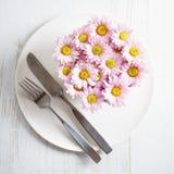 chryzantemy kwiatów menchie Fotografia Royalty Free