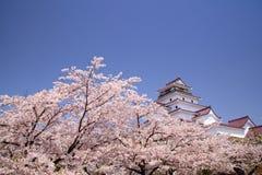 Château d'Aizuwakamatsu et fleur de cerise Photos libres de droits