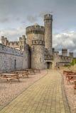 Château de Blackrock Image libre de droits
