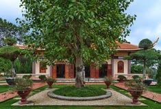 Chua Thien Vuong Pagoda. With tree, Dalat, Vietnam Stock Image