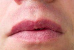Chubby χείλια ατόμων ` s Κινηματογράφηση σε πρώτο πλάνο στοκ εικόνες