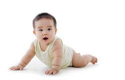 Chubby baby Royalty Free Stock Photography