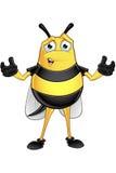 Chubby Bee Character Stock Photos